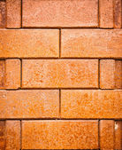 Brick red texture — Stock Photo