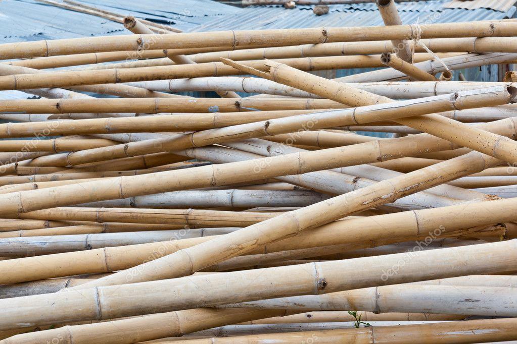O bambu seco fotografias de stock narunza 10163066 for Bambu seco para decoracion