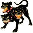 Cerberus on White - Imagens vectoriais em stock