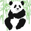 Panda with bamboo plants — Stock Vector