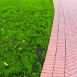 Footpath with green grass on left — Stock Photo #8197942