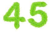Znak numeru z zielonych liści — Zdjęcie stockowe