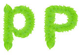 English alphabet made from green leafs — Stock Photo