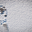 Snow foot print background — Stock Photo