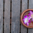 Thai orchid on wood platform — Stock Photo