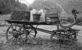 Wagon in black and white — Stock Photo