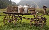 Old wagon — Stok fotoğraf