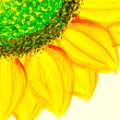 Sunflowers painting — Stock Photo #10461860