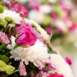 Stock Photo: Rose flower on wedding