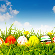 Foto de Stock  : Easter Eggs with flower on Fresh Green Grass