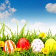 Easter Eggs with flower on Fresh Green Grass — Stock Photo #10463197