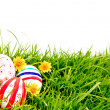 Easter Eggs with flower on Fresh Green Grass — Stock Photo