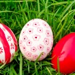 Easter Eggs  on Fresh Green Grass — Stock Photo