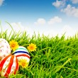 Easter Eggs with flower on Fresh Green Grass — Stock Photo #10463294