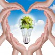 Stock Photo: Hands make heart shape and light bulb