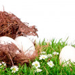 Stock Photo: Eggs in nest on fresh spring green grass