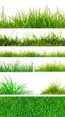 Färsk våren grönt gräs — Stockfoto