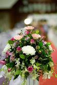Rose flower on the wedding — Stock Photo