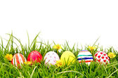 Easter Eggs with flower on Fresh Green Grass — Foto de Stock