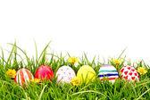复活节彩蛋与新鲜的绿草上的花 — 图库照片