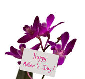 "Orchid with card "" Happy Mother's Day "" — Stock Photo"