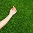 Hand on green lush grass — Stock Photo #10611840