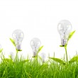 Eco concept -light bulb grow in the grass against blue sky — Stock Photo #10614707