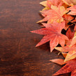 Artificial maple leafs over old wood background — Stock Photo