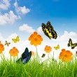 Yellow flowers, green grass and butterfly — Stok fotoğraf
