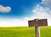 Wood sign with grass and blue sky — Stock Photo