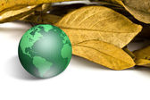 Green earth with dry leaves — Stock Photo