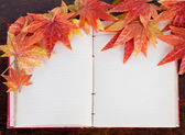 Open old book and Artificial autumn maple leafs — Stock Photo