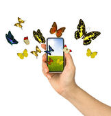 Butterfly reaches out of phone — Stock Photo