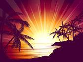 Coucher de soleil tropical — Vecteur