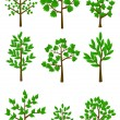 Stock Vector: 9 trees