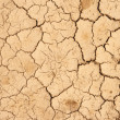 Cracks on the dry ground — Stock Photo #9007037
