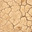 Cracks on the dry ground — Stock Photo