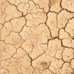 Cracks on the dry ground — Stock Photo