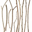 Royalty-Free Stock Photo: Sticks and twigs