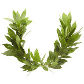 Laurel wreath — Stock Photo