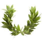 Laurel wreath — Stock Photo