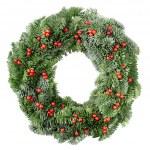 Noel çelenk ile kırmızı meyveler — Stok fotoğraf