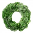Christmas wreath — Stock Photo #8338050