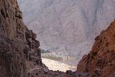 Sinai Monastery — ストック写真