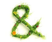Ampersand made of flowers and grass — Stock Photo