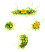 Symbols made of flowers and grass — Stock Photo