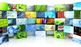 Collection of images — Stock Photo