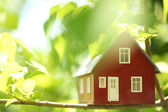 House in the trees — Stock Photo