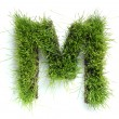 Letters made of grass - M — Stock Photo #9437635