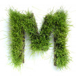 Stock Photo: Letters made of grass - M